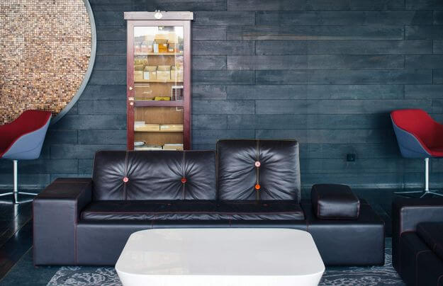 a.lounge leather couch